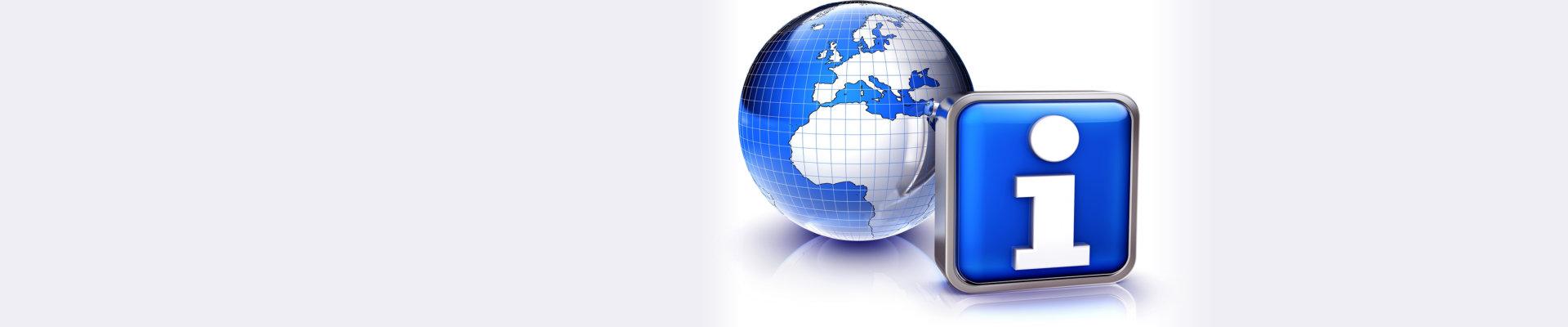 globe and internet icon
